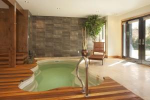 piscine-interieure-de-luxe